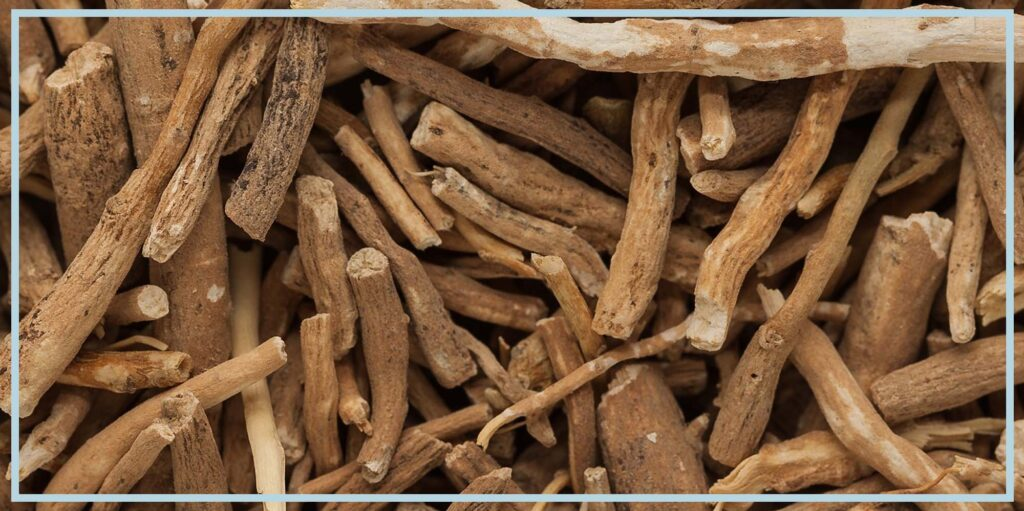 Ashwagandha Wiki: Benefits, Uses, Side Effects and Dosage