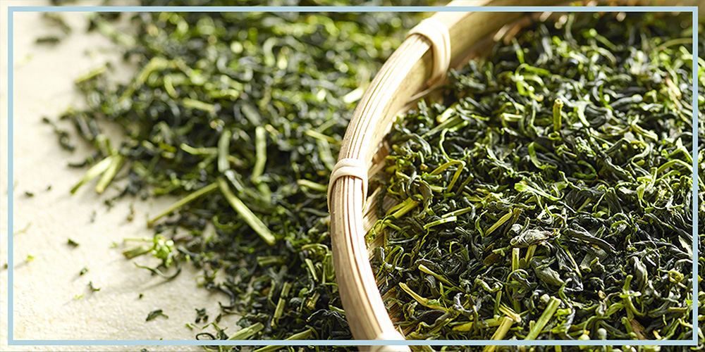 Green Tea as a supplement for weight loss and health benefits