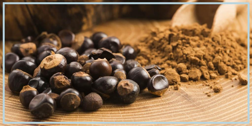 Guarana supplement natural caffeine source