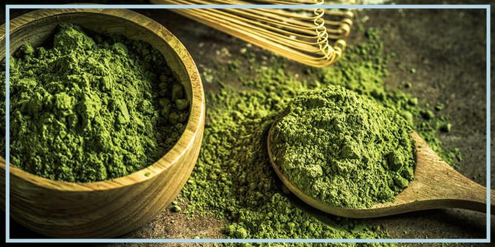 matcha green tea supplement powder