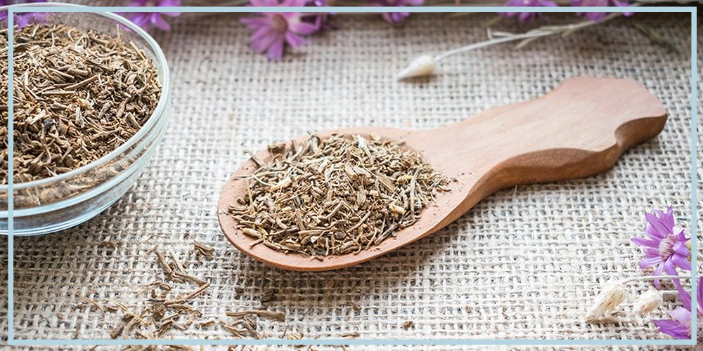 valerian root supplement benefits